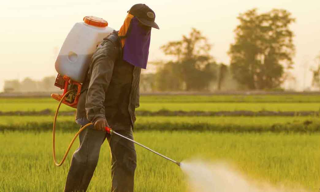 Glyphosate is Making You Sick